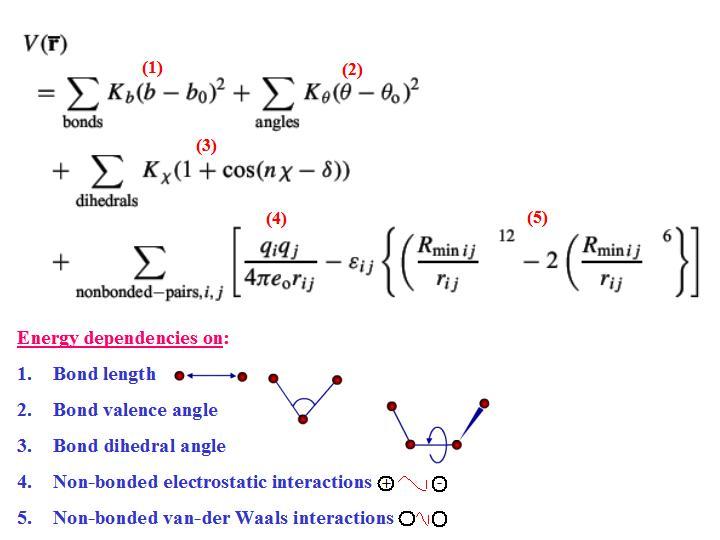 Molecular Biophysics Amit Kessel Ph D